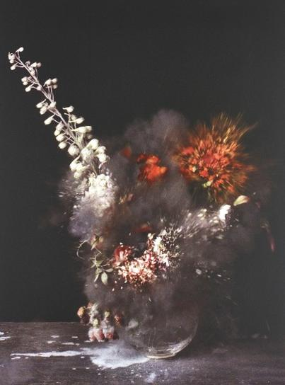 Ori Gersht-Untitled 28 From Time After Time: Exploding Flower & Other Matters-2007