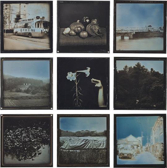 Takashi Arai - Fukushima, 2016-2017 From Daily D-Type Project-2017
