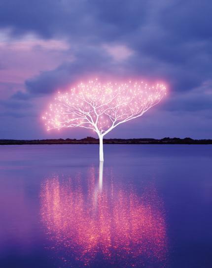 Lee Jeonglok-Tree Of Life 5-4-8-2013