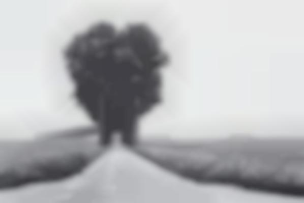 Henri Cartier-Bresson-Brie-1968