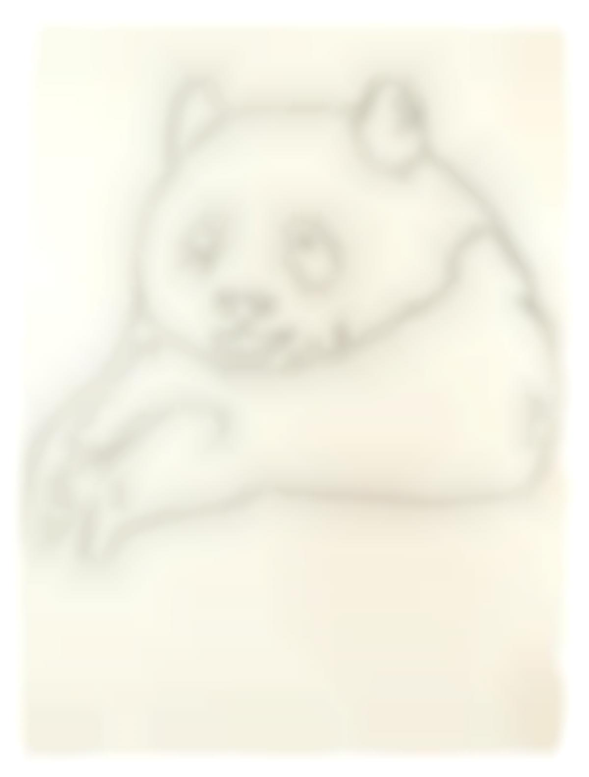 Andy Warhol-Endangered Species: Giant Panda-1983