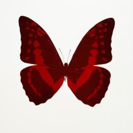 Damien Hirst-Burgundy/Chilli Red, From The Souls III-2010