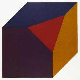 Sol LeWitt-Forms Derived From A Cube (Colors Superimposed), Plate #05 (L. 1991.15; S-82)-1991
