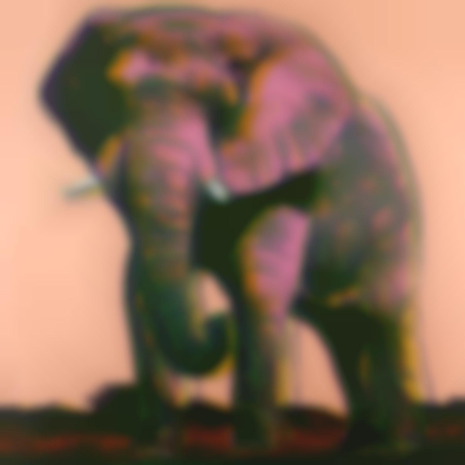 Andy Warhol-African Elephant, From Endangered Species (F. & S. Ii.293)-1983