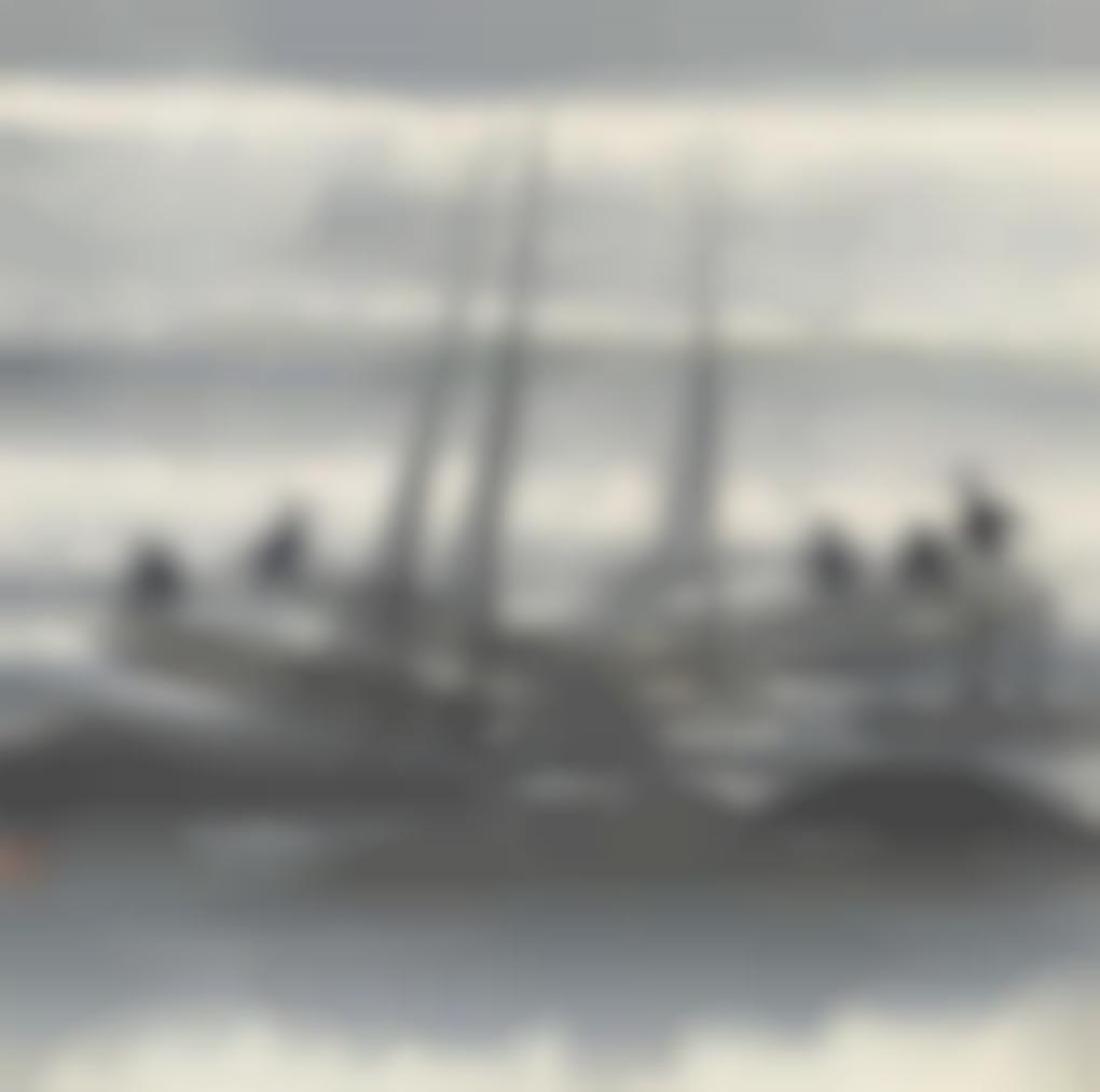 Lin Fengmian-Cormorants-