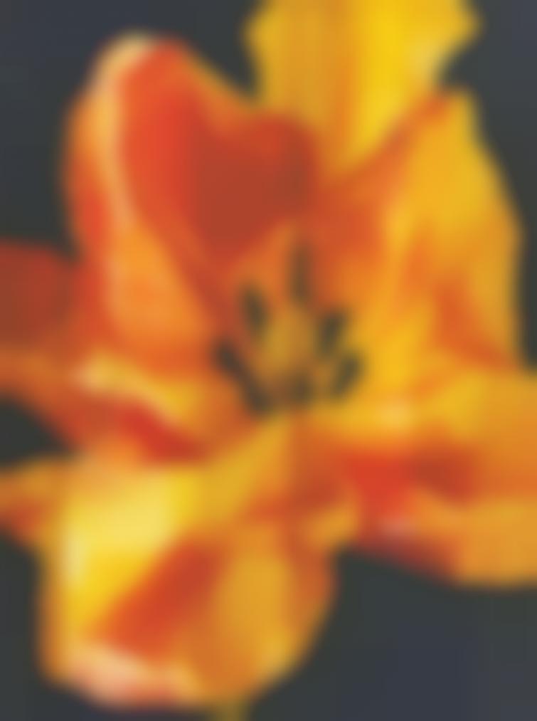 Natee Utarit-The Last Description Of The Old Romantic-2005
