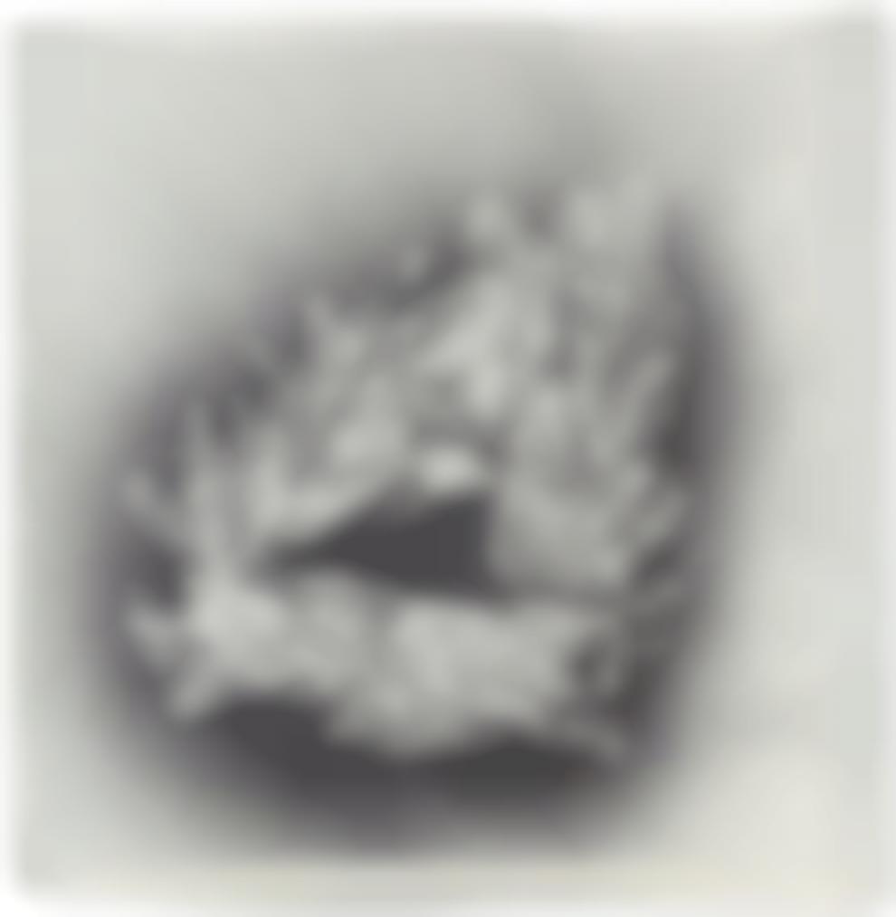 Edgar Arceneaux-The Art Of Creation I-2007