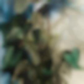 Jim Dine-Chelsea Anthurium-1991