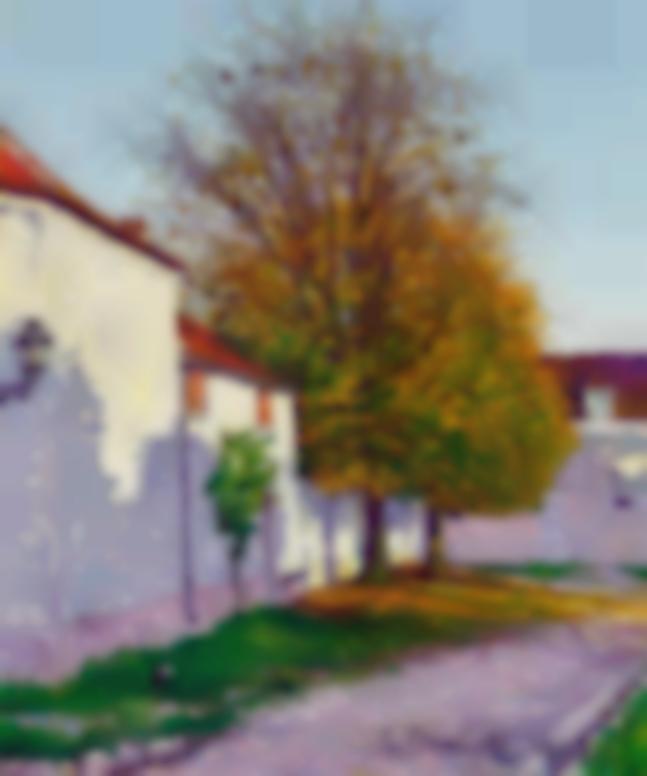 Gustave Cariot-Rue De Village-1903