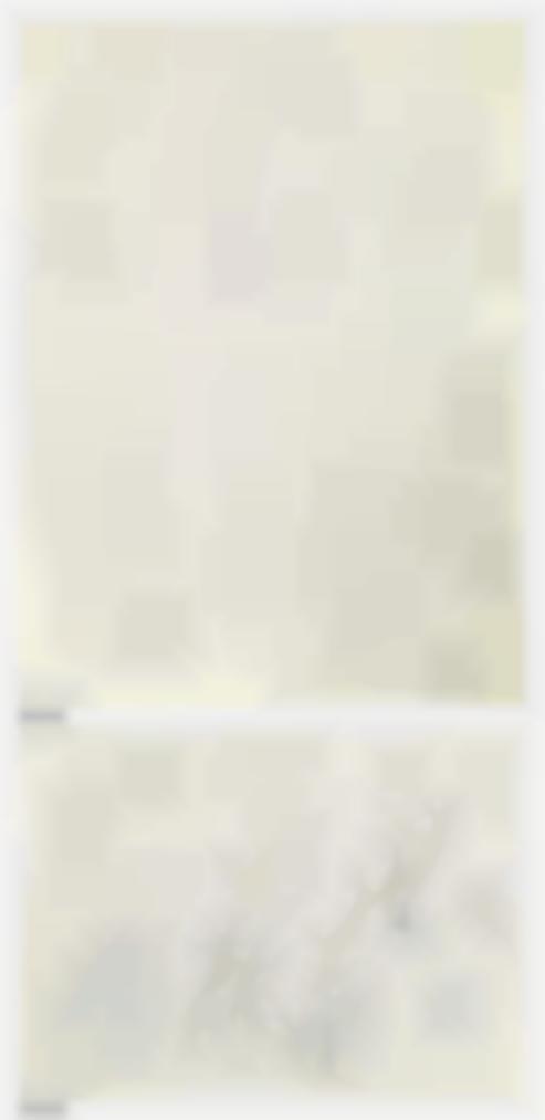Henri Matisse-Croquis De Nus (Recto); Minotaures (Verso)-1943