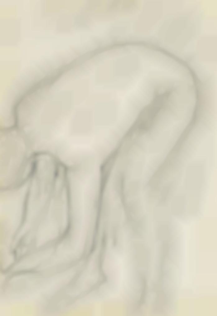 Pierre Bonnard-Nu A La Toilette-1915