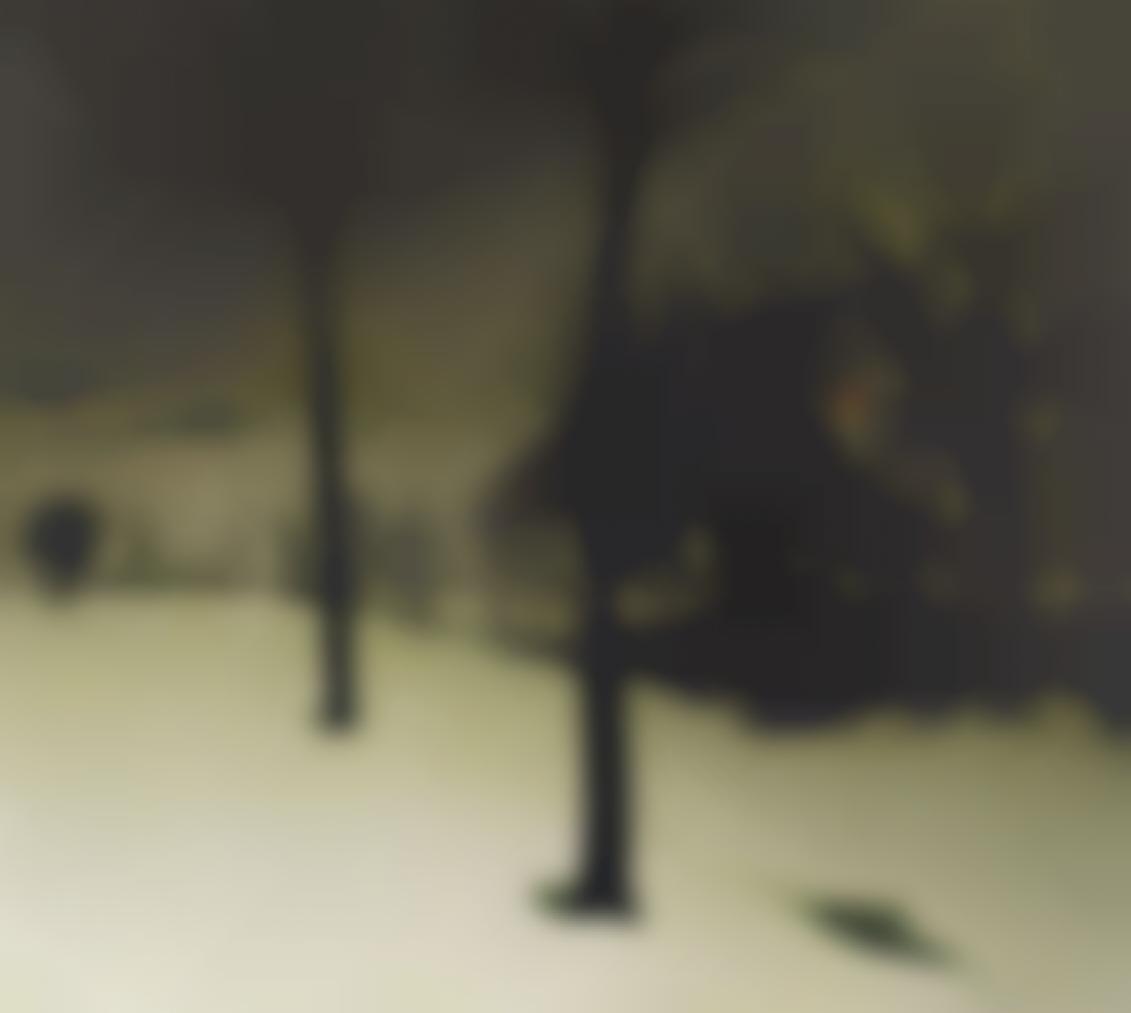 Valerius de Saedeleer-Het Bos In De Winder (Forest In The Winter)-1925
