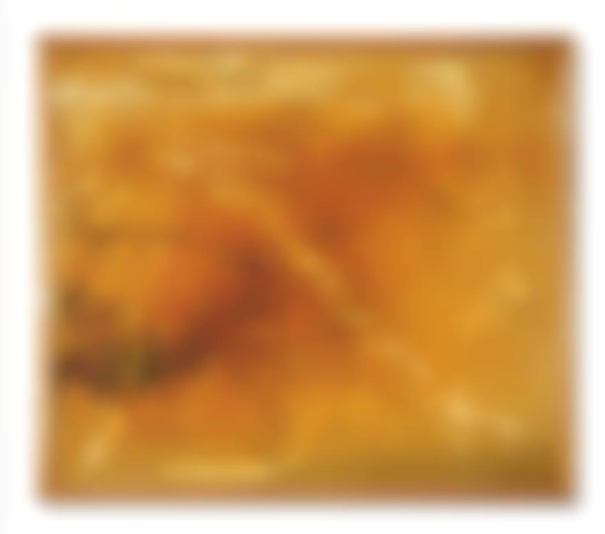 Sigmar Polke-Untitled-1989