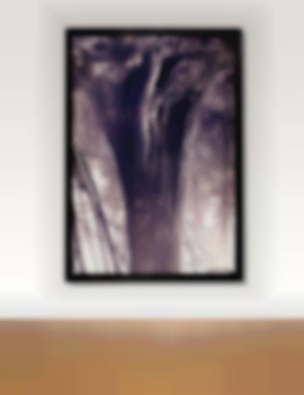 Rodney Graham-Stanley Park Cedar No. 6-1991