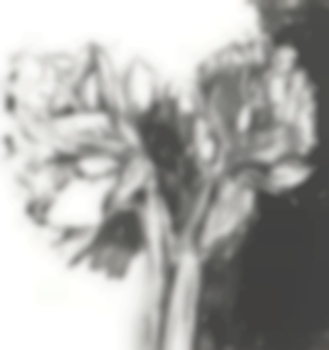 Jim Dine-Entrada Drive-