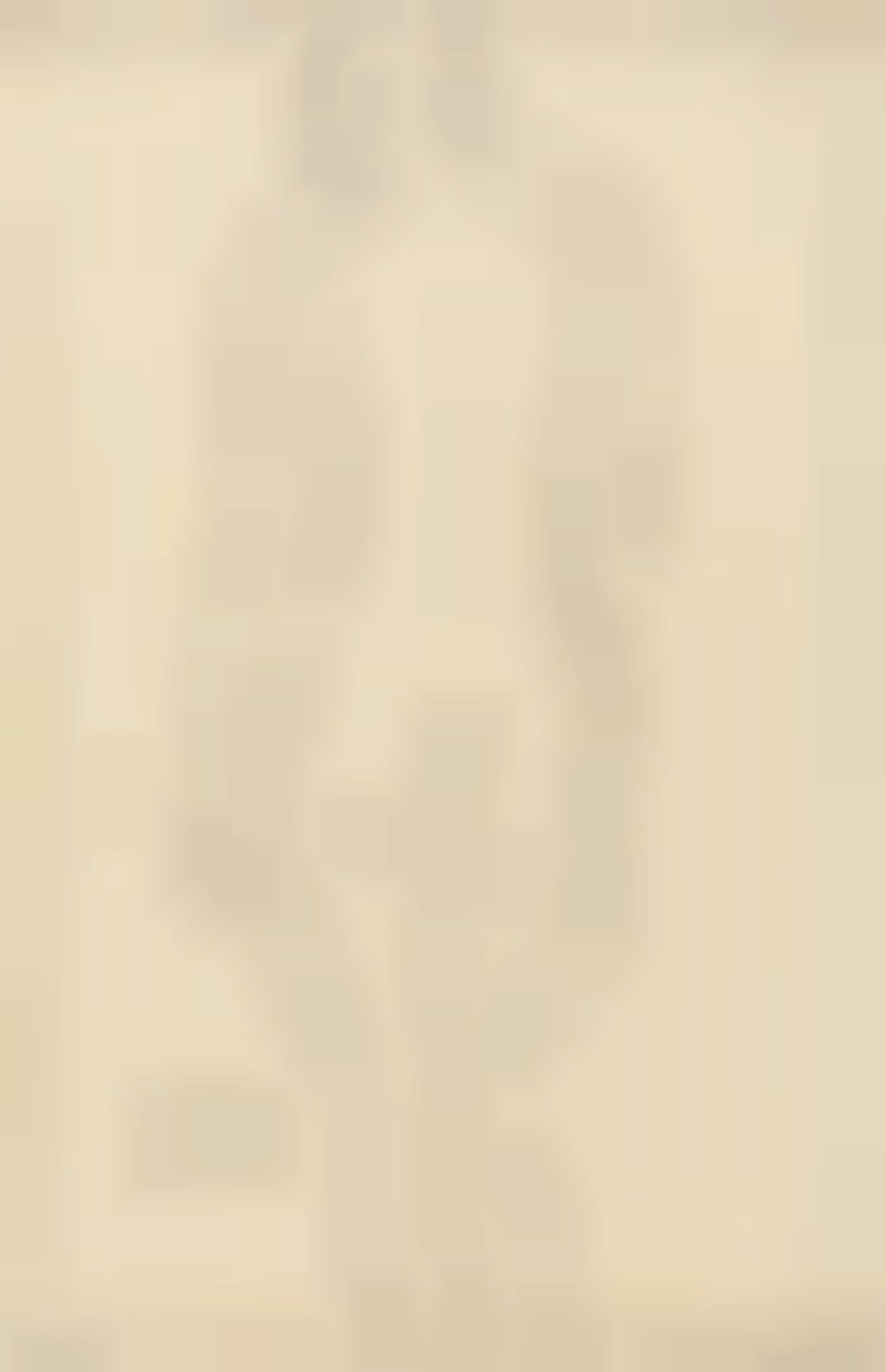 Gustav Klimt-Stehender Ruckenakt Etwas Nach Links-1913