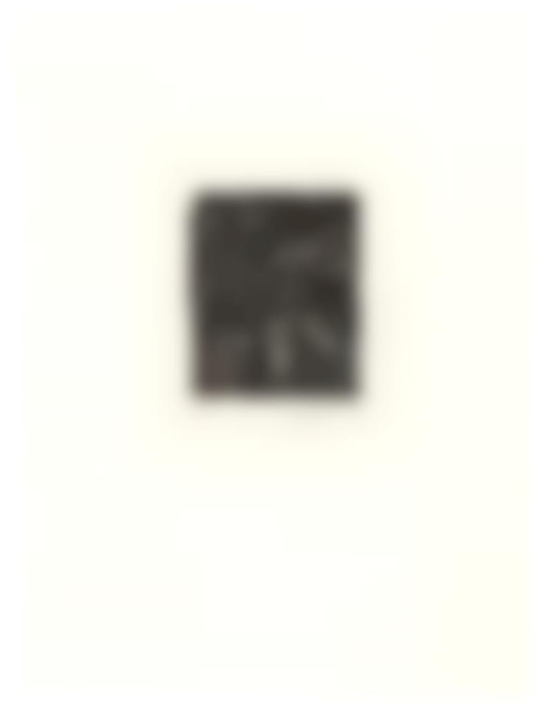 Jasper Johns-0 Through 9-