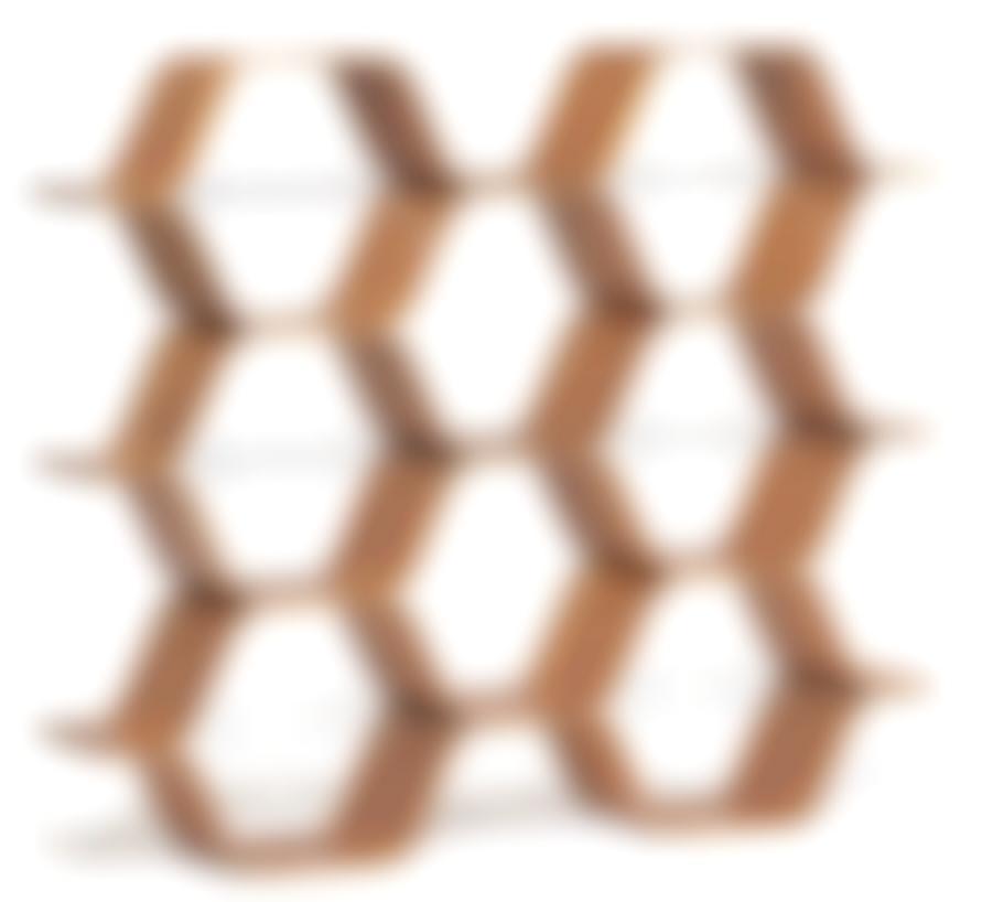 Bill Curry-Honeycomb Modules-