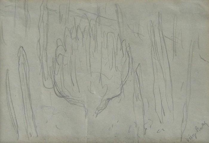 Diego Rivera-Cactus Sketch-