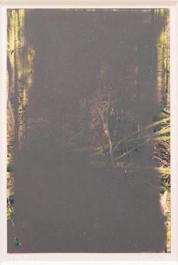 Gerhard Richter-Ohne Titel (26.1.08) / Untitled (26.1.08) / Wald II / Grau (Gray)-2008