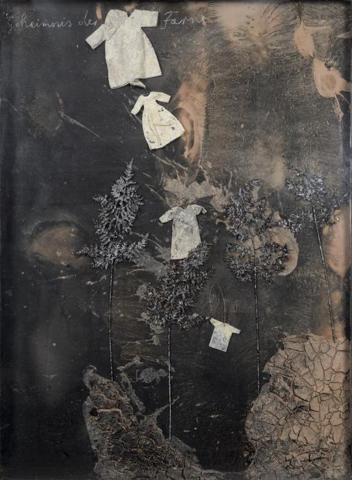 Anselm Kiefer-Geheimnis der Farne (Le Mystere des Fougeres)-2006