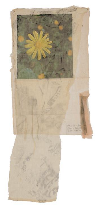 Robert Rauschenberg-Robert Rauschenberg - Sunflower-1975