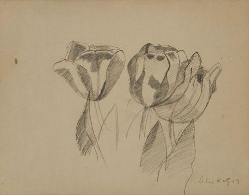 Alex Katz-Tulips-1967