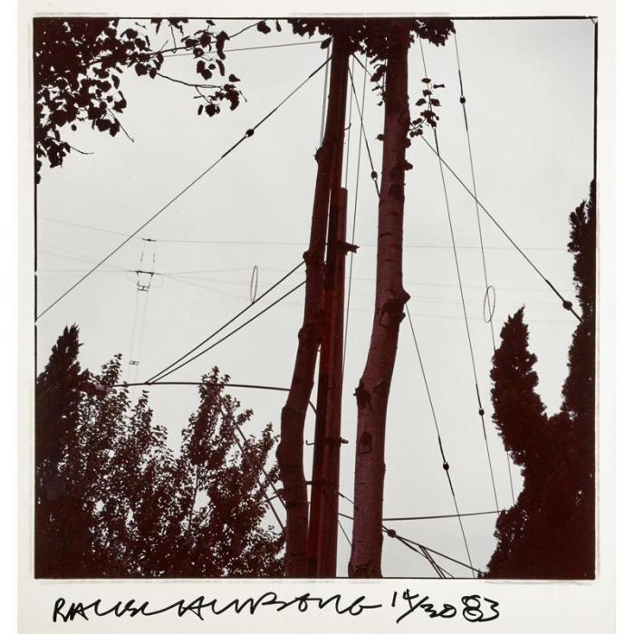 Robert Rauschenberg-Robert Rauschenberg - Studies For Chinese Summerhall (Wire & Trees)-1983