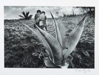 Sebastiao Salgado-Mexico-1980