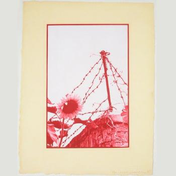 Robert Rauschenberg-Robert Rauschenberg - Untitled (From Photogravures Suite 2 (China Mix-21))-1983