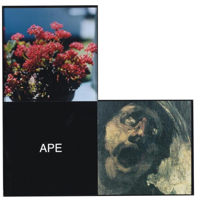 John Baldessari-Ape: Maquette for the Elbow Series (B3) / Elbow Series: APE-1999