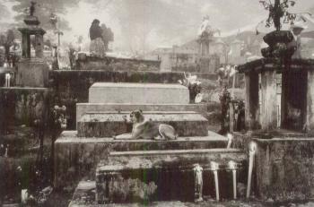 Sebastiao Salgado-Cemetery of the Town of Hualtla de Jimenez, Mexico, from Other Americas-1980