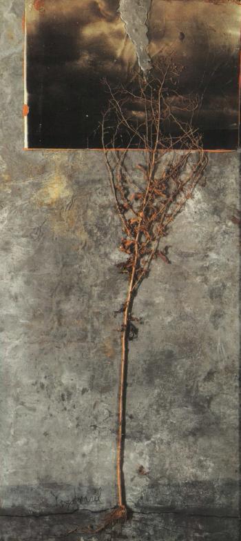 Anselm Kiefer-Yggdrasil-1986
