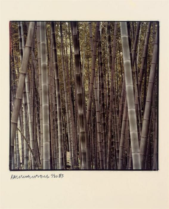 Robert Rauschenberg-Robert Rauschenberg - One Plate (From Studies For Chinese Summerhall)-1983