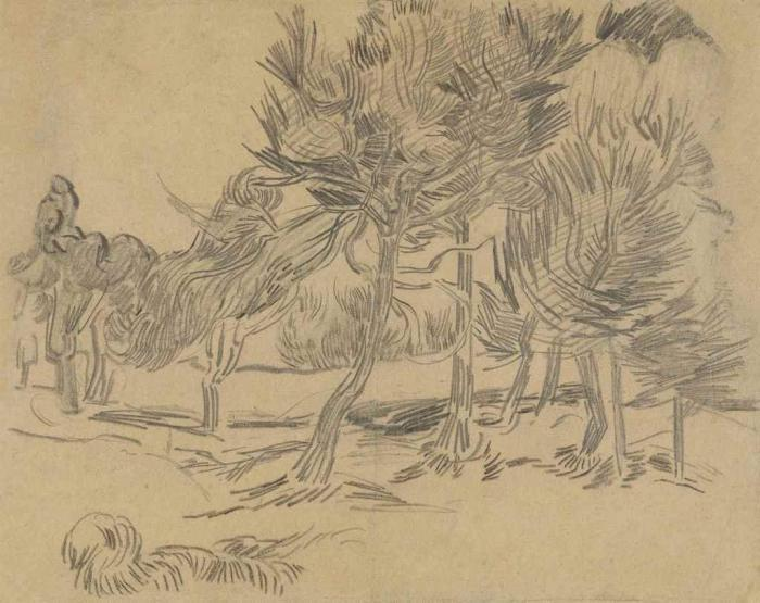 Vincent van Gogh-Groupe de pins-1889