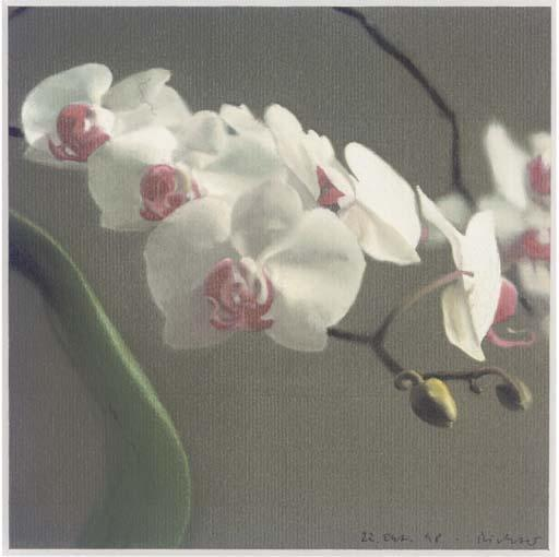 Gerhard Richter-Orchidee V (Orchid V)-1998