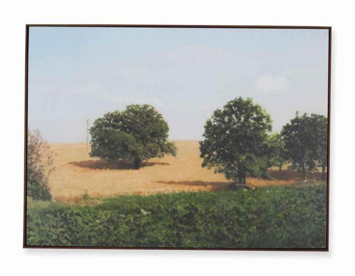 Gerhard Richter-Baume im Feld (Trees in Field)-1988