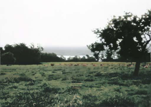 Gerhard Richter-Laacher Wiese (Laacher Meadow)-1987