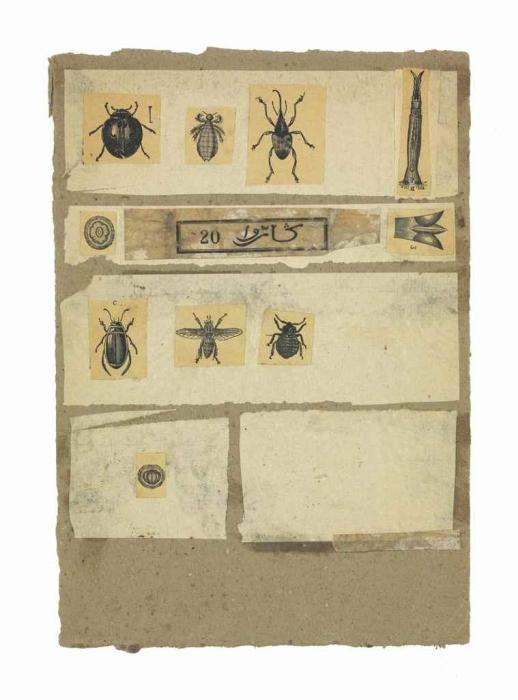 Robert Rauschenberg-Robert Rauschenberg - Untitled (Insects)-1952