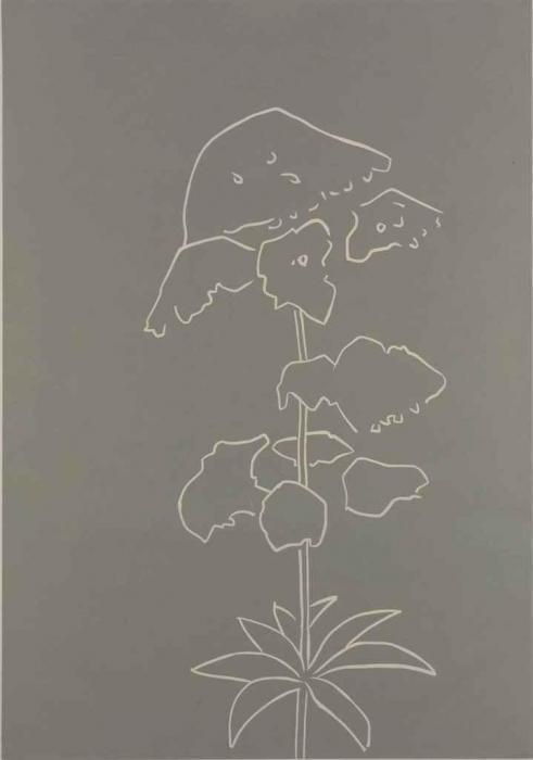 Alex Katz-Yarrow (Cantz 376)-2003