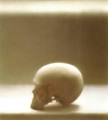 Gerhard Richter-Schaedel 545-3 (Skull 545-3)-1983