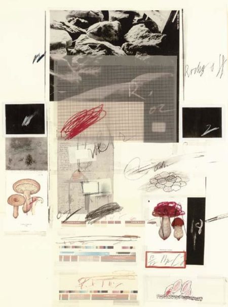 Cy Twombly-Natural History Part I Mushrooms: Plate X-1974