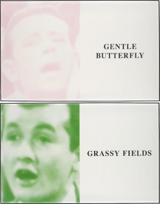 John Baldessari-Prima Facie (Fifth State): Gentle Butterfly / Grassy Fields-2006