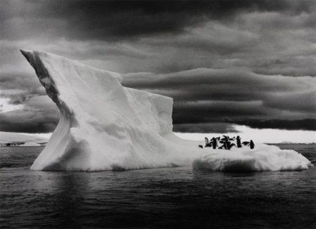 Sebastiao Salgado-Icebergs near Paulet Island, Situated East of the Antarctica Peninsula, from Genesis-2005