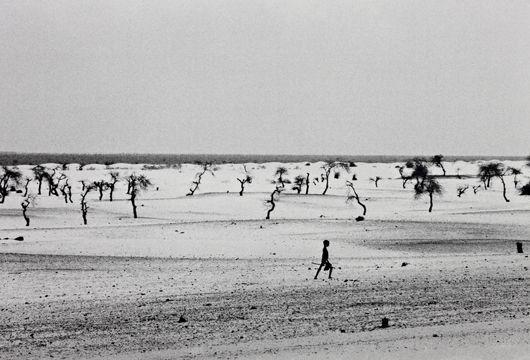 Sebastiao Salgado-Site of the How Dried Lake Faguibine, Mali, Africa-1985