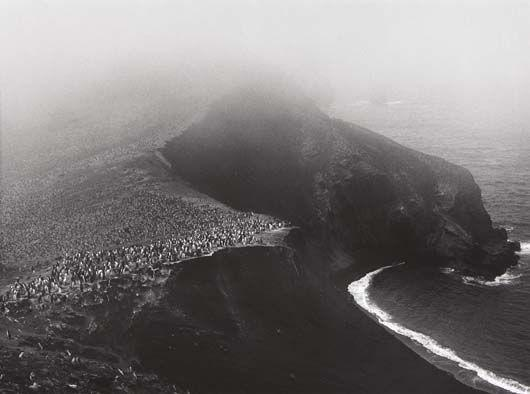 Sebastiao Salgado-Colony of Hundred Thousand Chinstrap Penguins, Bailey Head, Deception Island, Antarctica from Genesis-2005
