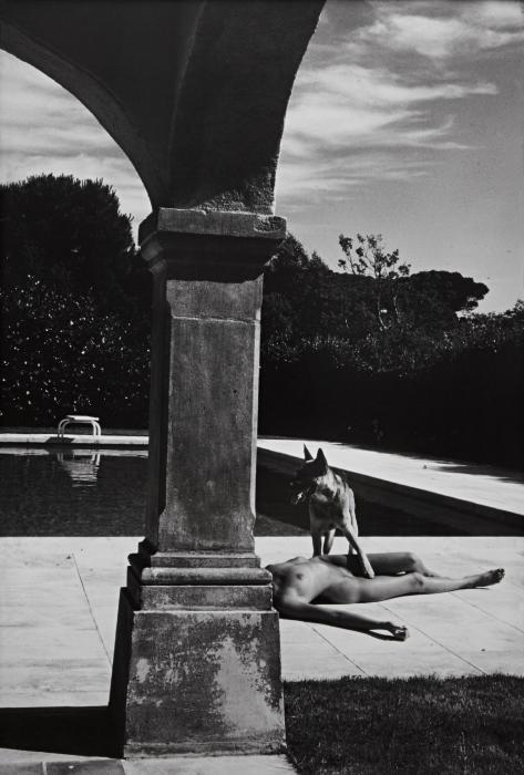 Helmut Newton-Nude and Police Dog, St. Tropez-1975