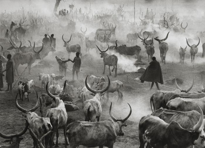 Sebastiao Salgado-Dinka Cattle Camp of Amak, Southern Sudan (Sud Sudan)-2006