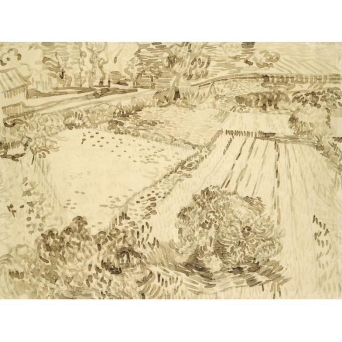 Vincent van Gogh-Le champ de coquelicots-1889