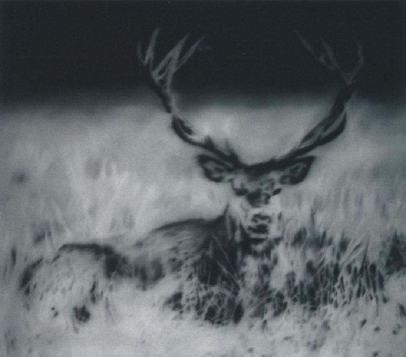 Gerhard Richter-Hirsch II (Deer II)-1966